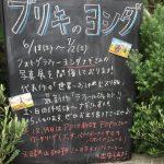 ヨシダナギさん写真展「ブリキのヨシダ」に行ってきました